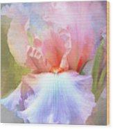 Pastel Iris Pleasure Wood Print