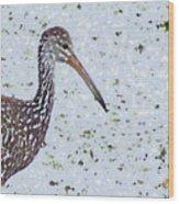 Pastel Limpkin Wood Print