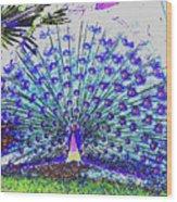 Pastel Peacock Wood Print
