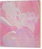 Pastel Pink Petals Wood Print