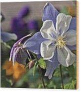 Pastel Spring Flowers Wood Print