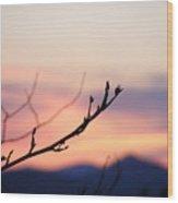 Pastel Twig Wood Print