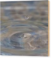 Pastel Water Sculpture 5 Wood Print