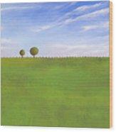 Pasture Land Wood Print