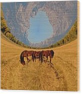 Pasture Of Another World Wood Print