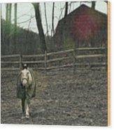 Pasture Pony Wood Print