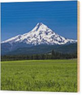 Pasture View Of Mt. Hood Wood Print
