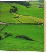 Pastures In The Azores Wood Print