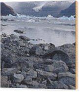 Patagonia Ice Wood Print