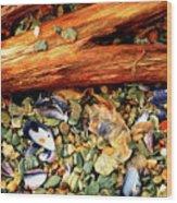 Patagonian Shore Wood Print