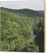 Patapsco Valley State Park - Overlook Wood Print
