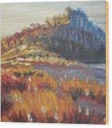 Pataua Wood Print