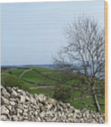 Patchwork Quilt Lough Corrib Maam Ireland Wood Print