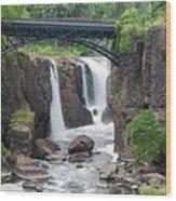 Paterson Falls Wood Print