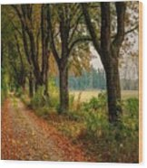 Path Along The Horses Meadow On The Farm Lovedayvale L B Wood Print