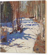 Path Behind Mowat Lodge Wood Print