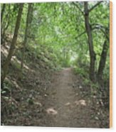 Path By The River Wood Print