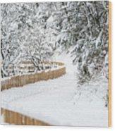 Path In Snow Wood Print