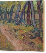 Path In The Garden Of The Asylum, By Vincent Van Gogh, 1889, Kro Wood Print