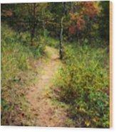 Path In The Prairie Wood Print