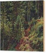path in the woods 55h34 Ivan Ivanovich Shishkin Wood Print