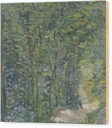 Path In The Woods Paris, May 1887 - July 1887 Vincent Van Gogh 1853  1890 Wood Print