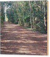 Path Into The Jungle Wood Print