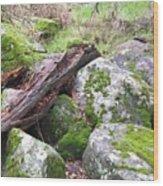 Path Not Taken Wood Print