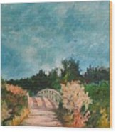 Path Over The Bridge At Robinson Preserve Wood Print