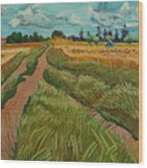 Path Through A Wheat Fields Wood Print