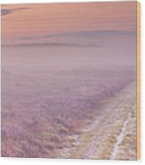 Path Through Blooming Heather Near Hilversum, The Netherlands Wood Print