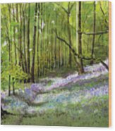 Path Through Bluebell Wood Wood Print