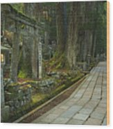 Path Through Koyasan Okunoin Cemetery, Japan Wood Print