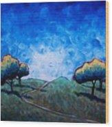 Path Through Las Trampas Wood Print by Sheila Tajima
