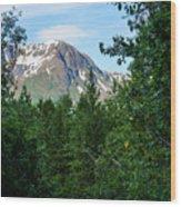 Path Through Nature Wood Print