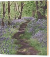 Path Through The Bluebells Wood Print