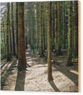 Path Through The Woods. Wood Print