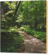 Path To Conkle's Hollow Wood Print