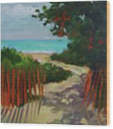 Path To Delray Beach 1 Wood Print