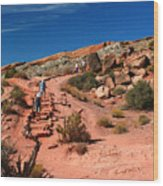 Path To Double O Arch Arches National Park Wood Print