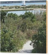 Path To Edgartown Lighthouse Wood Print