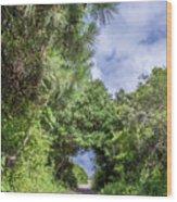 Path To Huntington Beach Wood Print