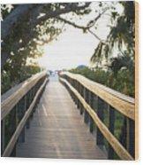 Path To Marco Island Beach Wood Print