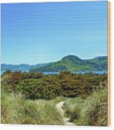 Footpath To Nestucca River Wood Print