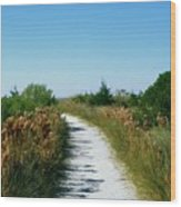 Path To Paradise Wood Print