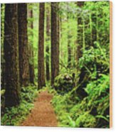 Path To Peace Wood Print