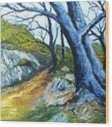 Path To Rivendale Wood Print
