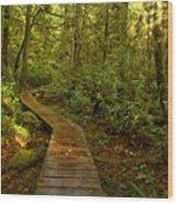 Path To Serenity Wood Print