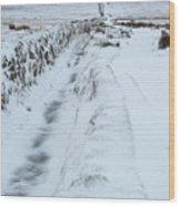 Path To South Hessary Tor IIi Wood Print