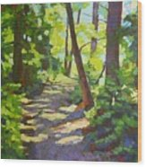 Path To The Lake Wood Print
